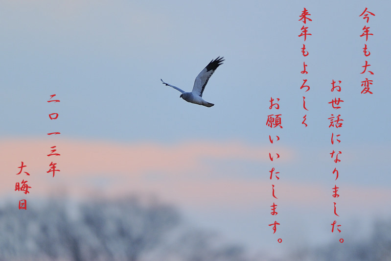 130119_DSC6088.jpg